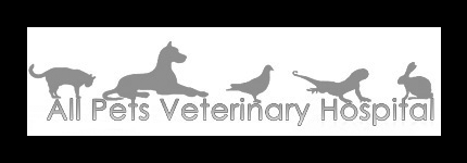 All Pets Veterinary Hospital